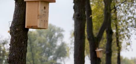 Vijf mille voor 125 nestkasten in Sprundel en St. Willebrord