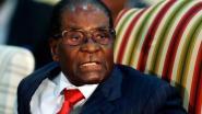 Robert Mugabe: van intelligente vrijheidsstrijder tot gewelddadig despoot