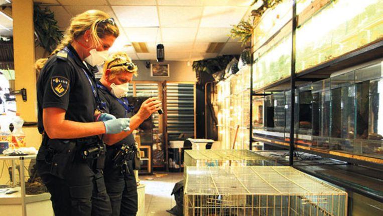 Agenten in de dierenwinkel waar meer dan 100 dode dieren werden gevonden. Beeld MediaTV