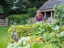 Zo bundelen tuinliefhebbers in het Vechtdal hun krachten