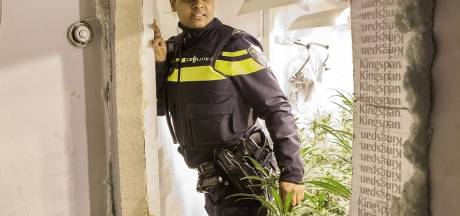 293 wietplanten gevonden in huis in Bruinisse