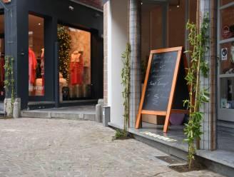 """Mechelsestraat krijgt 40 gevelplanten: """"Samenwerking tussen handelaars en bewoners"""""""