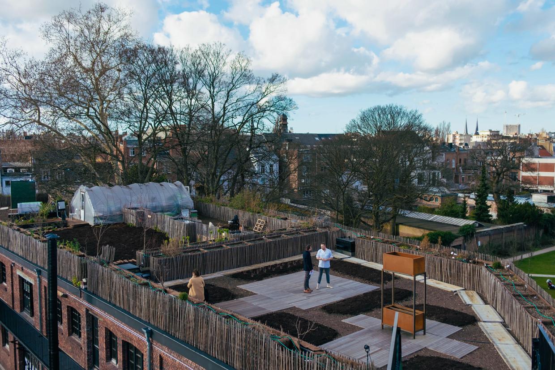 Op het dak van PAKT, in Antwerpen staat er eigenlijk een stadsboerderij.