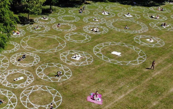Cirkels in het Julianapark
