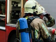 """Une dizaine de bêtes périssent dans un incendie à la ferme pédagogique """"Chez Rosemalou"""" à Clavier"""