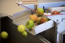 De appels worden gewassen voordat ze de pers in gaan.