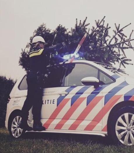 Tweetal steelt dure kerstboom uit Intratuin in Elst: 'Bijzondere kerstgedachte'