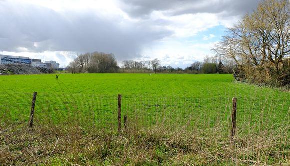 Op dit terrein wordt tegen 2020 een zes hectare groot bos aangeplant.