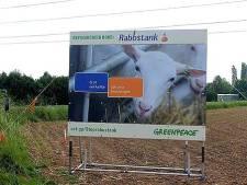 Greenpeace plaatst in Hurwenen protestbord tegen Rabobank