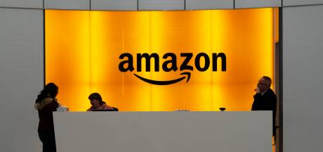 Webgigant Amazon verdubbelt winst