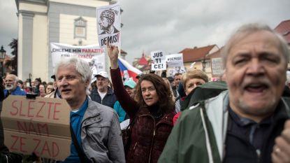 Tsjechen de straat op tegen regering