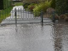 Grauwe Polder in Etten-Leur staat blank door gesprongen waterleiding: bestrating en tuin beschadigd