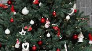 Technische dienst haalt kerstbomen op