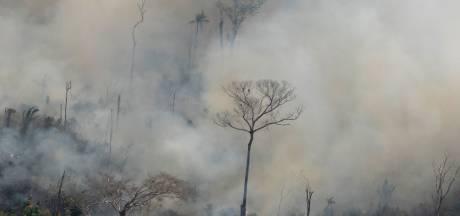 Al 150.000 euro opgehaald voor noodactie voor Amazone