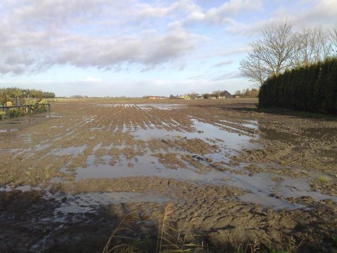 Het ministerie van Landbouw keerde de schadebedragen uit als gevolg van een hevige regenperiode in West Brabant in 2002. foto BN DeStem