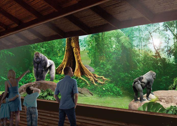 Indruk van toekomstig gorillaverblijf in Blijdorp.