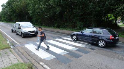 Zwevend zebrapad moet auto's doen vertragen
