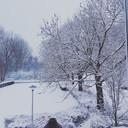 """""""Uitzicht vanuit het zijraam van onze woning in Arnhem Presikhaaf om 08.00 uur!"""", schrijft Melissa."""