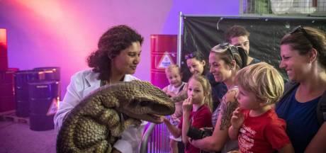 Laatste weekend Dinopark Twente: drukte tussen de reuzen