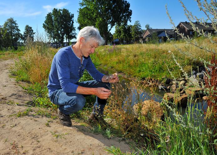 IVN-natuurgids Anne Regts bij de oever van de Goorloop in Helmond-West.