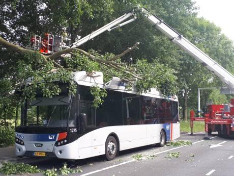 Groenbeheer hield boom die op bus viel niet in de gaten