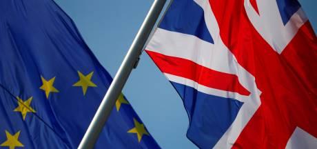 'Britten maken zich zorgen over brexit, meerderheid wil in EU blijven'