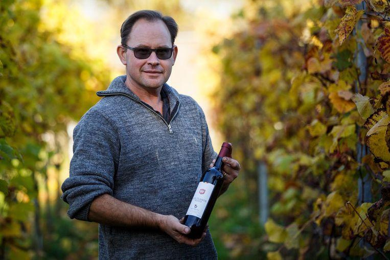 Marino Moenaert tussen zijn wijnranken.