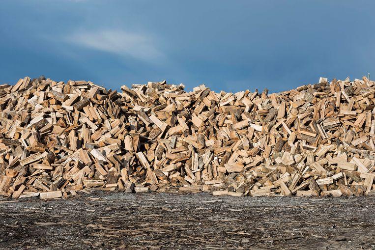 Hout in North Carolina, VS, een van de belangrijkste pelletproductiecentra voor buitenlandse markten. Beeld John Greim/ LightRocket via Getty Images