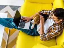Waar in huis werken de meeste mensen nu? Test je kennis over thuiswerken