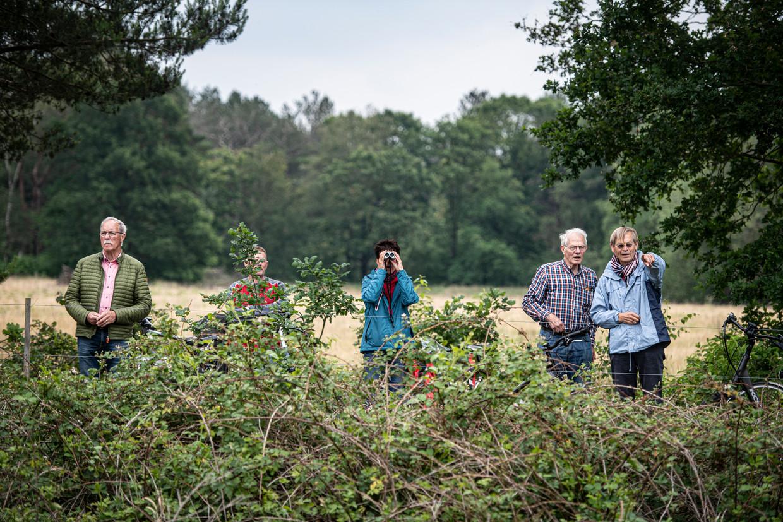 De leden van bewonersverenging Maashorstburgers zijn niet blij met de aanwezigheid van wisenten in natuurgebied de Maashorst.
