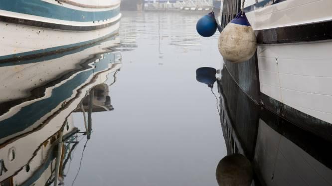 Grote uitbraak coronavirus op vissersboot mogelijk eerste directe bewijs dat antilichamen infectie verhinderen