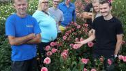 Tiende verjaardag voor corsogroep Wonderland en nog nooit lag bloemenveld er zo mooi bij
