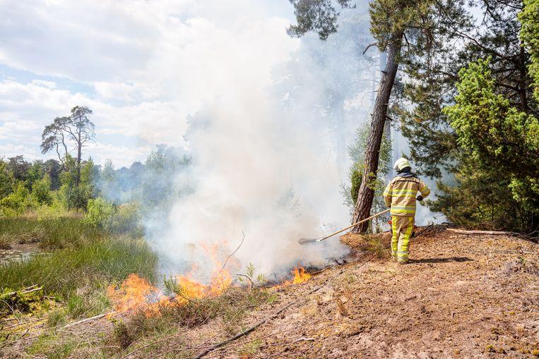 De brandweer in het bosgebied bij Besthmen, Overijssel  Beeld Hollandse Hoogte / Nederlandse Freelancers