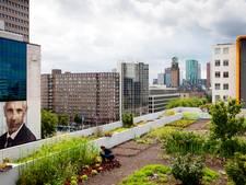 Groenspiraties door Netwerk Stadslandbouw in Breda