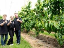 FruitDelta Rivierenland is blij met Investeringsfonds