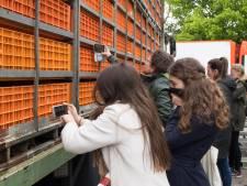 Activisten en kippenslachter drinken gezellig samen kopje koffie in Nunspeet: zo kan het dus ook