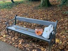 Bizar! 17 vissen in kom aangetroffen in Utrechts park