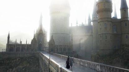 Zie jij het? Trailer 'Fantastic Beasts 2' bevat één onoverkomelijke fout volgens Harry Potter-fans