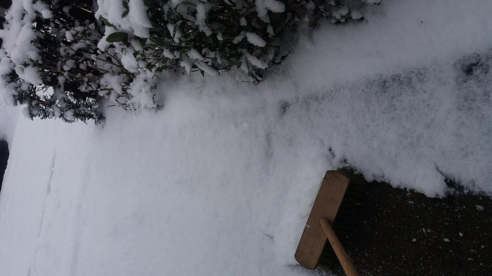 Mies Elf doet haar morele plicht en ruimt sneeuw.