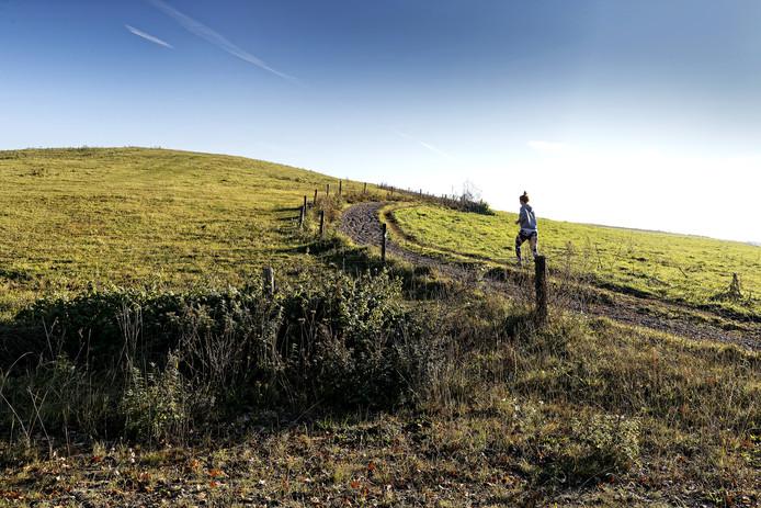 Meierijstad wil vijf natuurgebieden verder ontwikkelen, waaronder de Vlagheide in Schijndel.