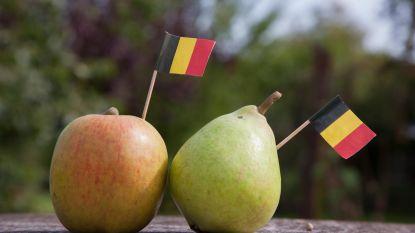 Workshops over appelen