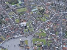 Subsidie voor groene daken in Den Bosch verlengd