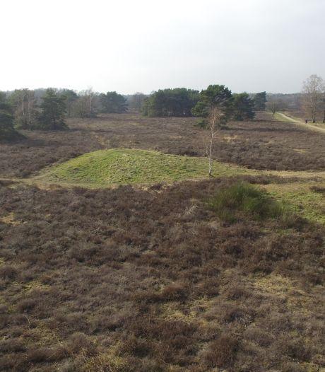 Veluwse archeologen hoopvol na onderzoek: 'Dat grafheuvelmuseum gaat er komen'