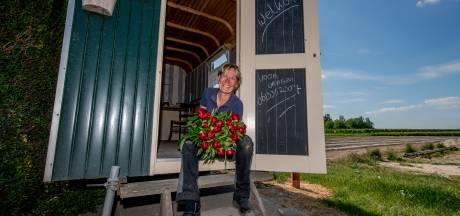 De 'Pipo-pioenen' van Hetty uit Opijnen: 'Ik ga niet lopen goochelen met prijzen'