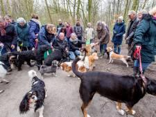 Baasjes willen hun hond 'gewoon' los laten lopen in het Sterrebos