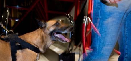 Vier aanhoudingen na invallen met drugshond in vijf huizen Hardenberg