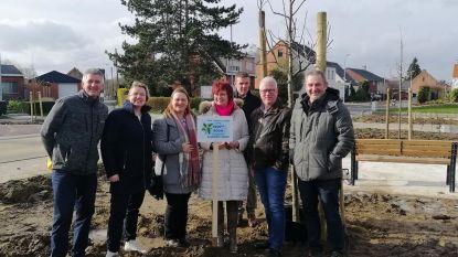 Gemeente plant 5.000ste boom en geeft zo startschot van 'Bomenplan'