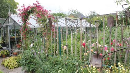 Inwoners zetten hun feeërieke tuinen open voor het grote publiek