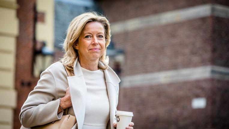 Minister Kajsa Ollongren (Binnenlandse Zaken) is nog volop in gesprek met allerlei partijen over de invoering van de wet. Beeld anp