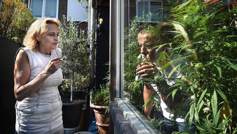 Marian Hutten en Serge de Bruijn van Midical Cannabis Supplies in hun achtertuin. Beeld Marcel van den Bergh
